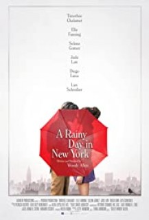 A Rainy Day in New York